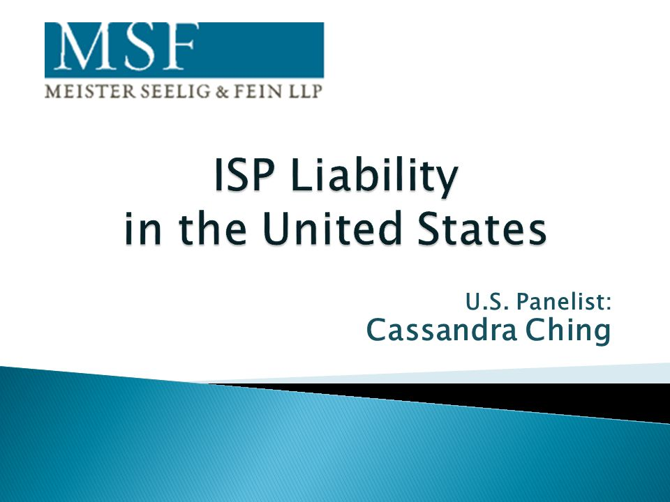 ISP Liability in the United States