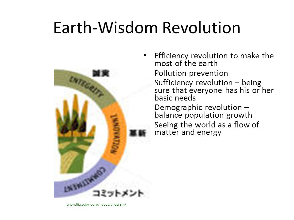 Earth-Wisdom Revolution