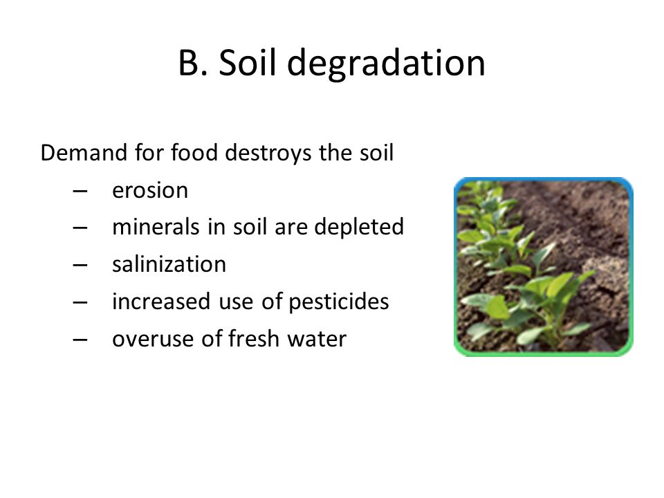B. Soil degradation Demand for food destroys the soil erosion
