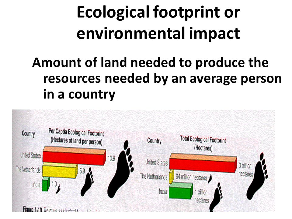 Ecological footprint or environmental impact