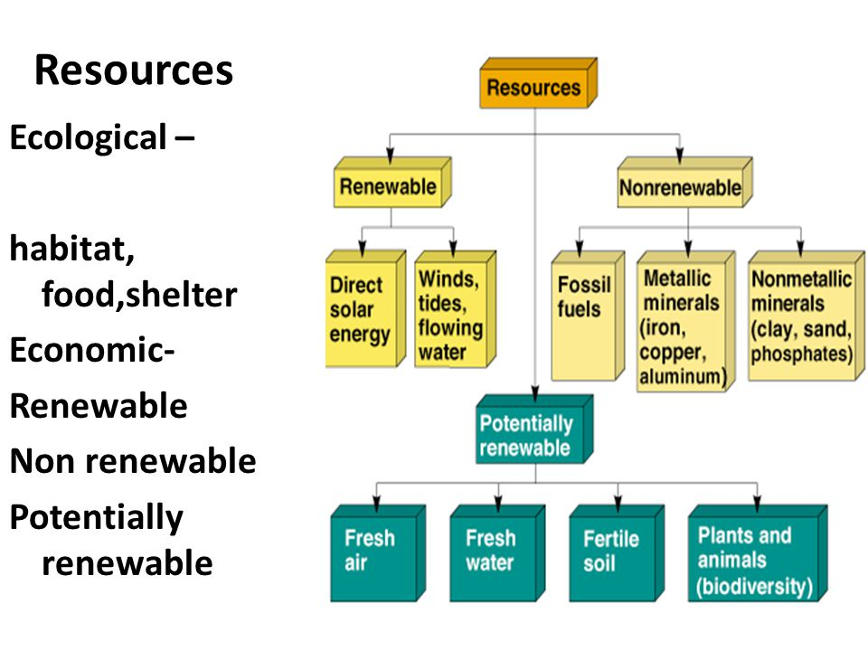 Resources Ecological – habitat, food,shelter Economic- Renewable