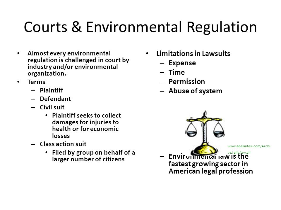 Courts & Environmental Regulation