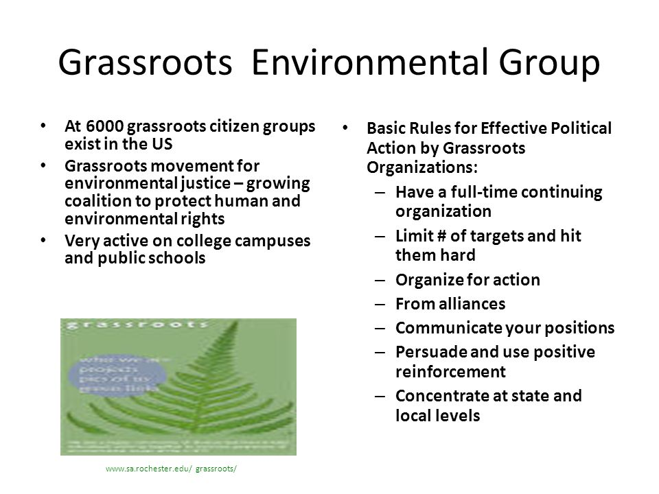 Grassroots Environmental Group