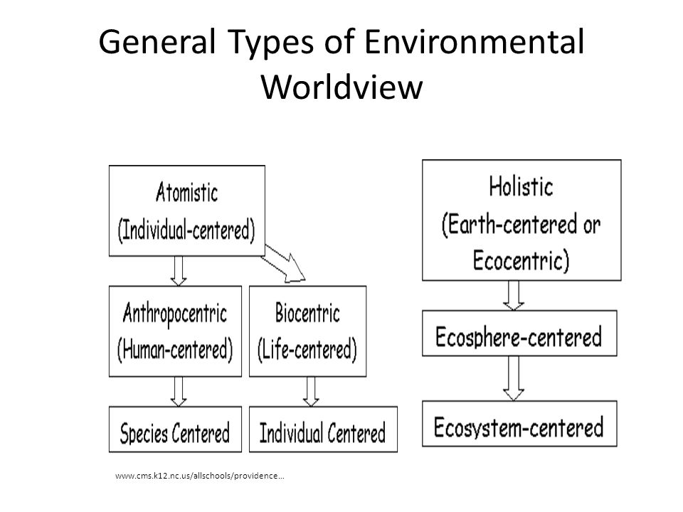 General Types of Environmental Worldview