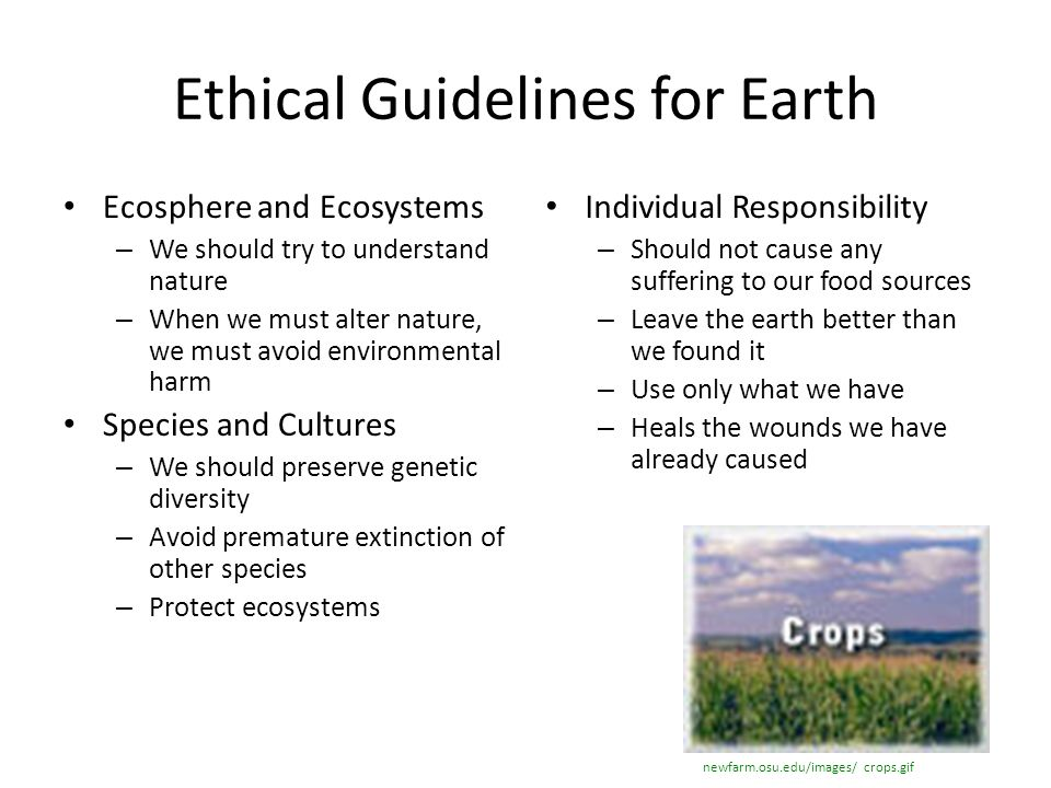 Ethical Guidelines for Earth