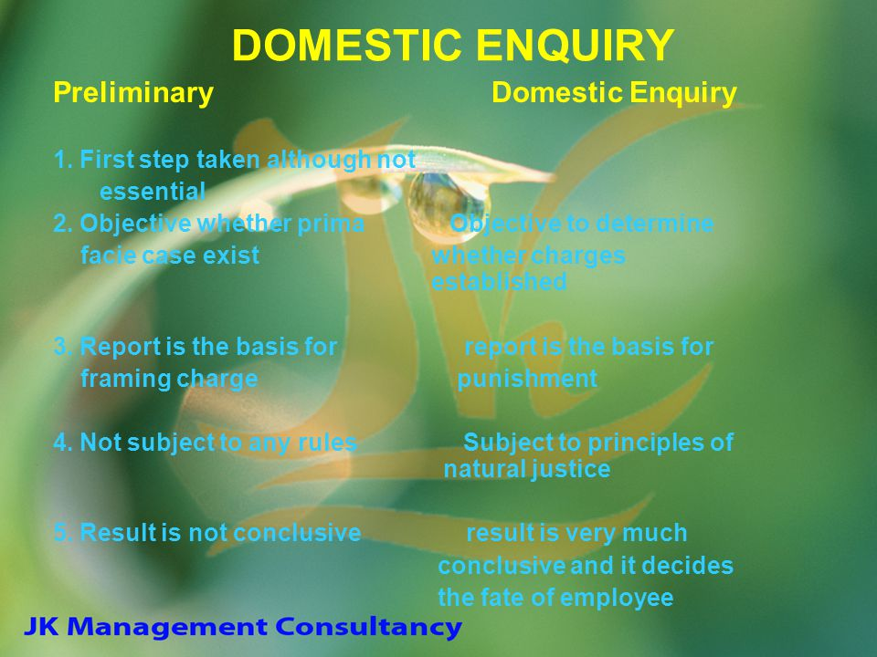 DOMESTIC ENQUIRY Preliminary Domestic Enquiry