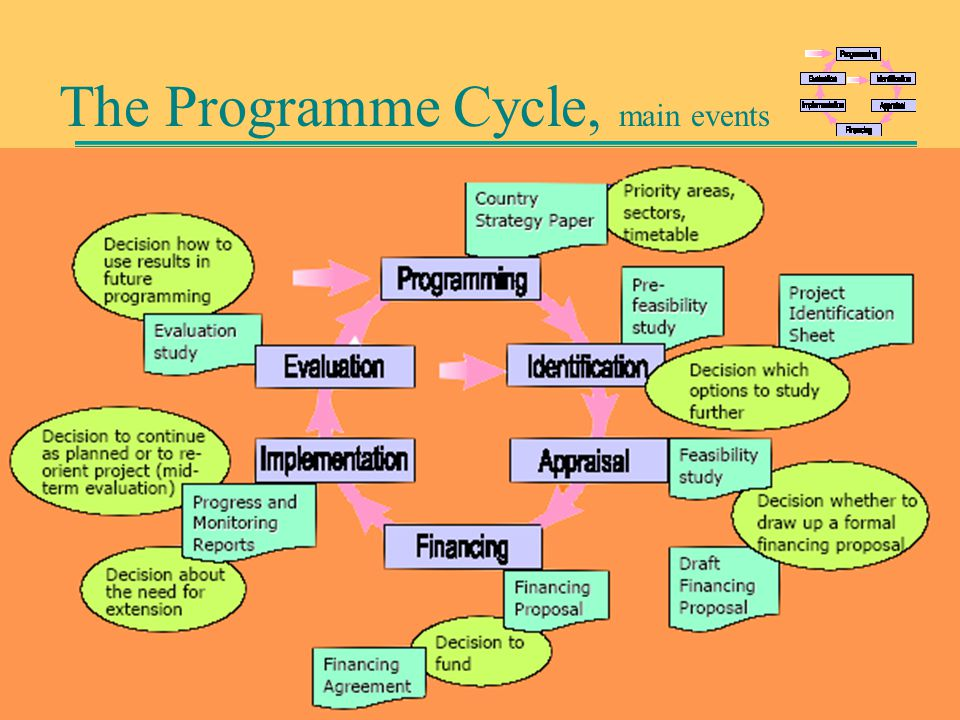 The Programme Cycle, main events