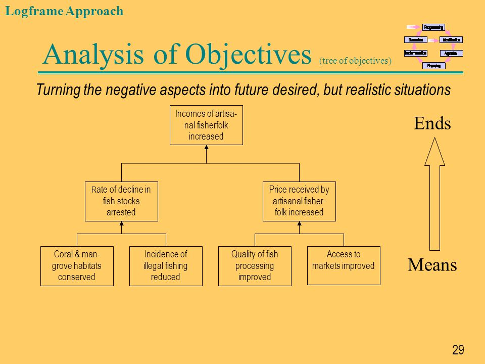 Analysis of Objectives (tree of objectives)
