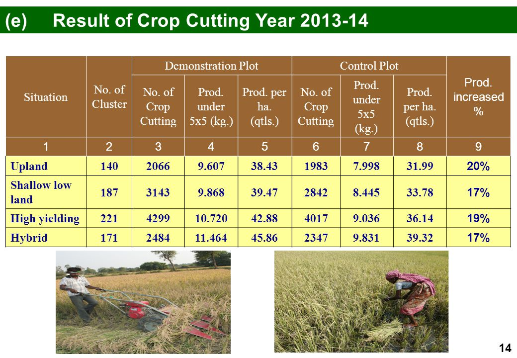 (e) Result of Crop Cutting Year 2013-14
