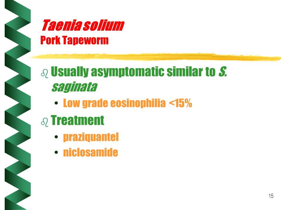 Taenia solium Pork Tapeworm
