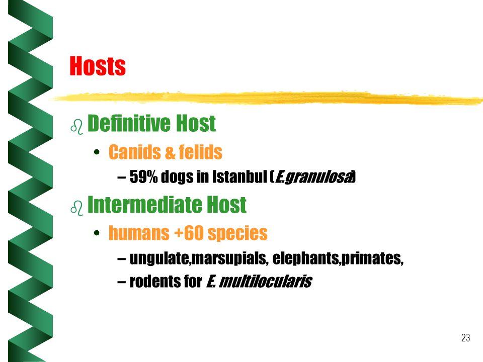 Hosts Definitive Host Intermediate Host Canids & felids