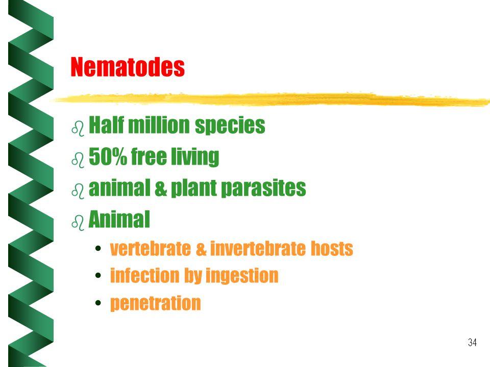 Nematodes Half million species 50% free living