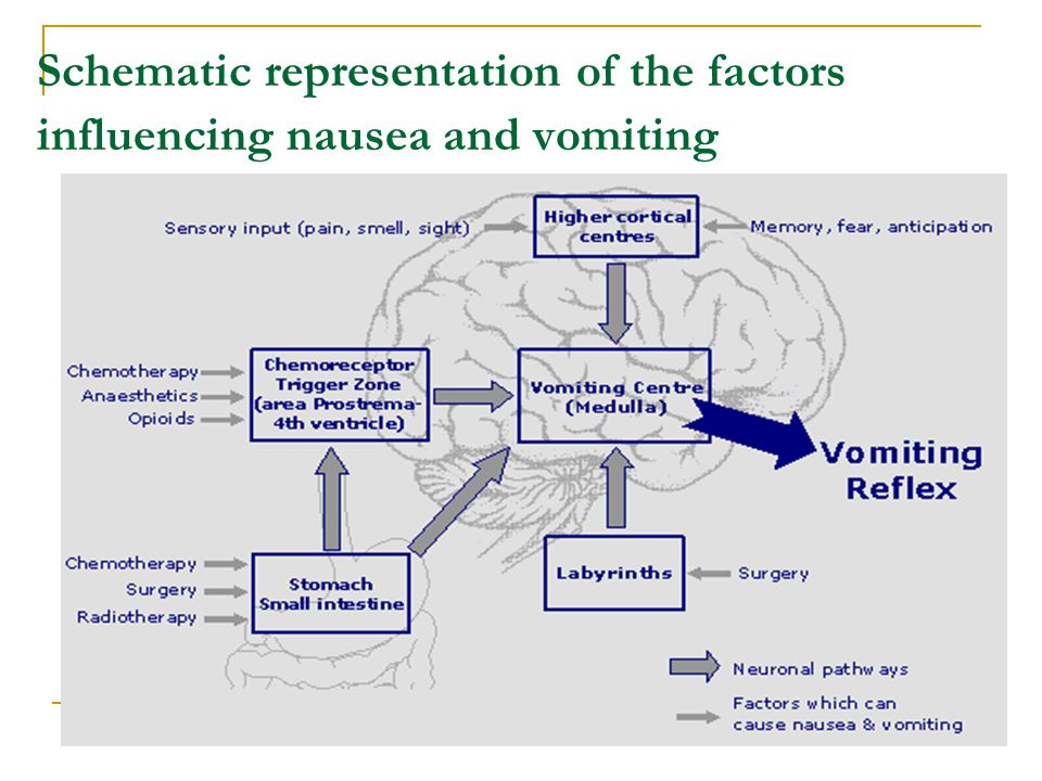 Schematic representation of the factors influencing nausea and vomiting