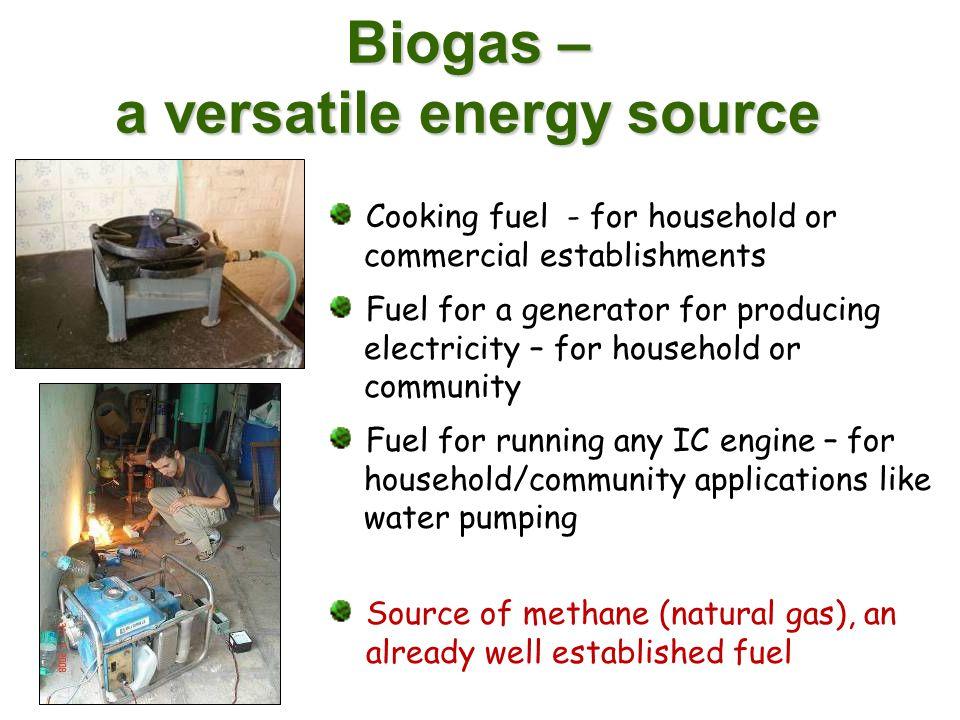 Biogas – a versatile energy source