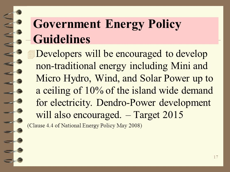 Government Energy Policy Guidelines