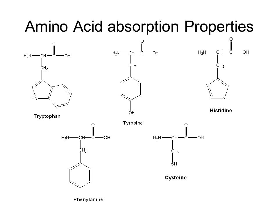 Amino Acid absorption Properties