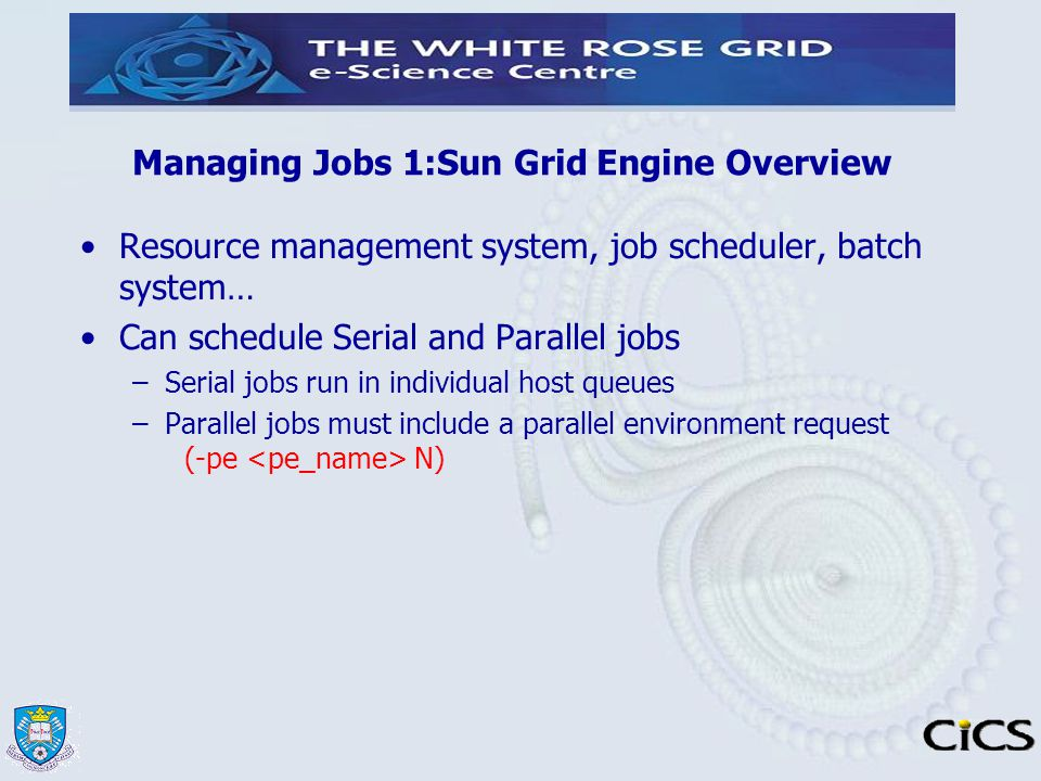 Managing Jobs 1:Sun Grid Engine Overview