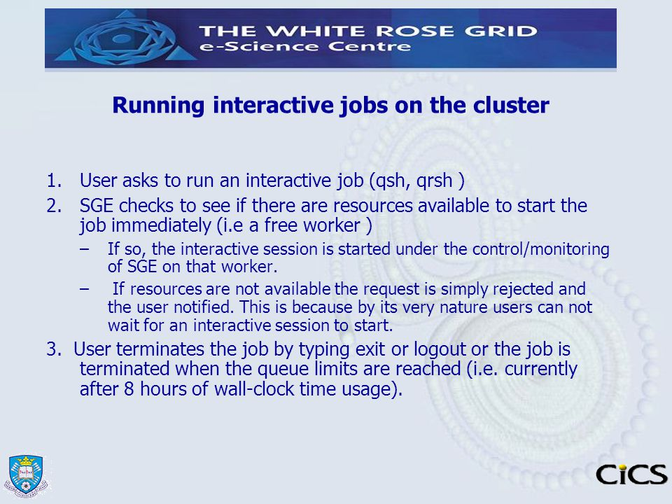 Running interactive jobs on the cluster