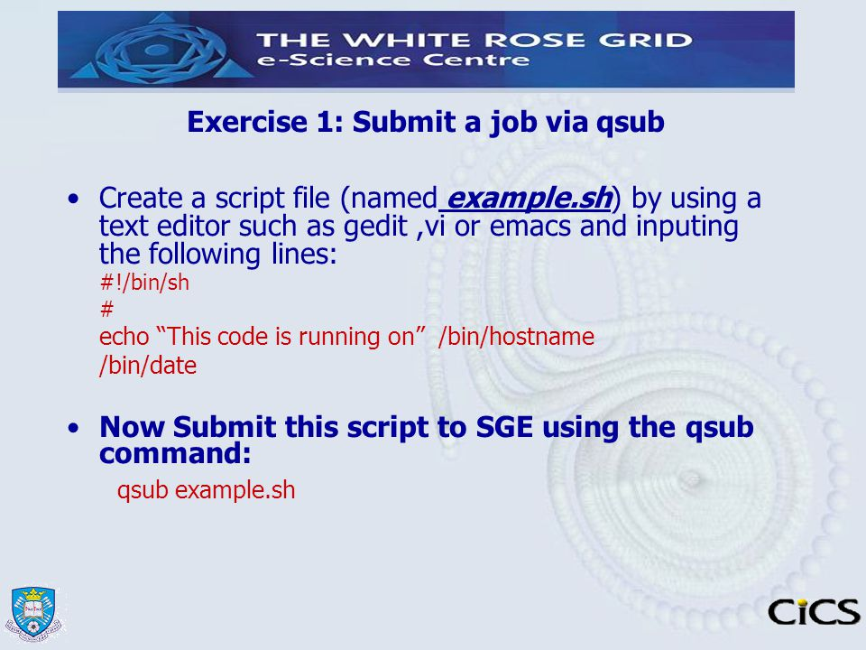 Exercise 1: Submit a job via qsub