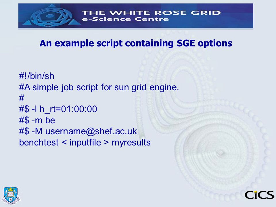 An example script containing SGE options