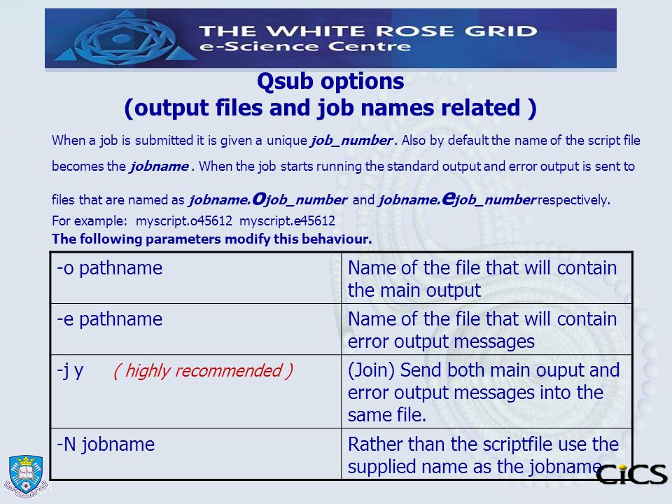 Qsub options (output files and job names related )