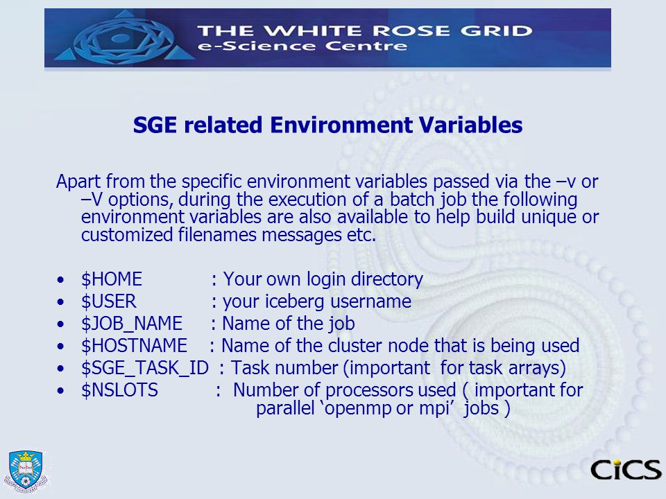 SGE related Environment Variables