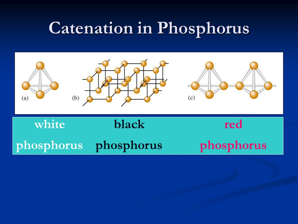 Catenation in Phosphorus