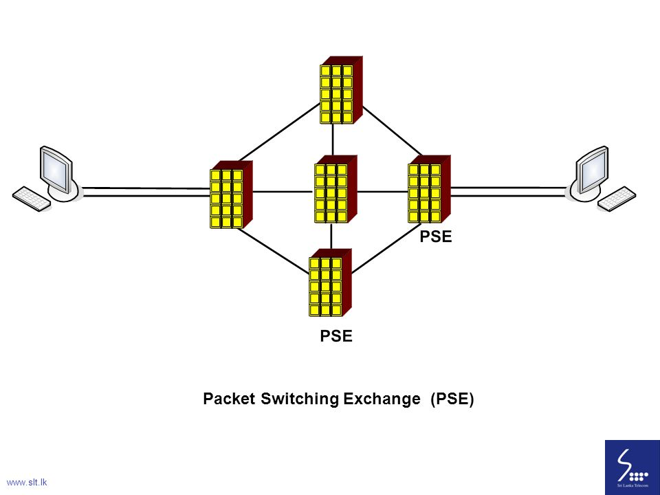 Packet Switching Exchange (PSE)