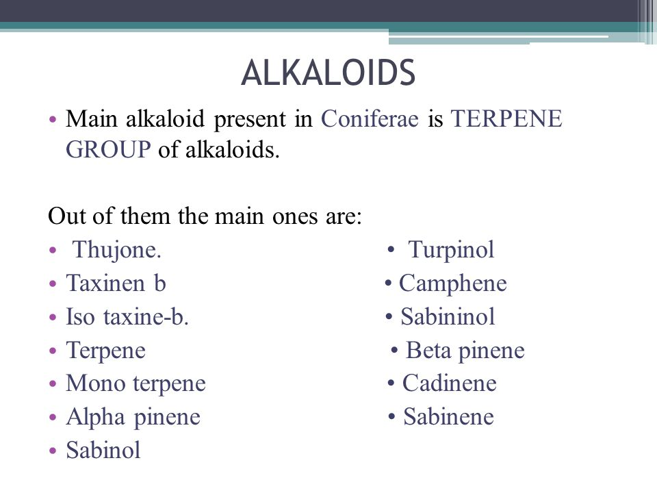 ALKALOIDS Main alkaloid present in Coniferae is TERPENE GROUP of alkaloids. Out of them the main ones are: