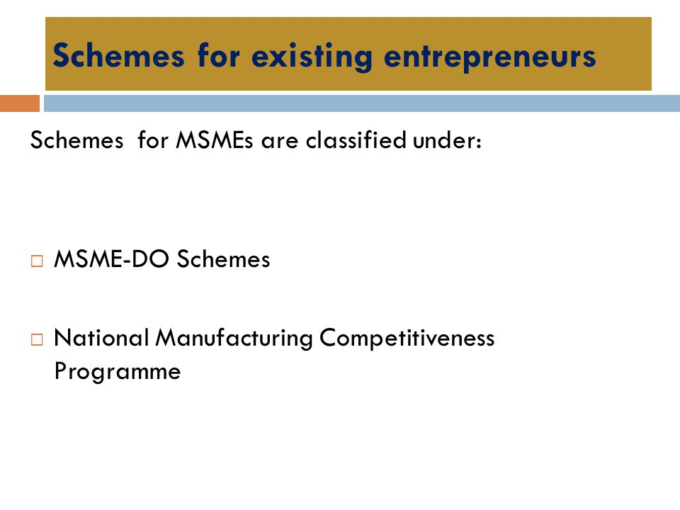 Schemes for existing entrepreneurs