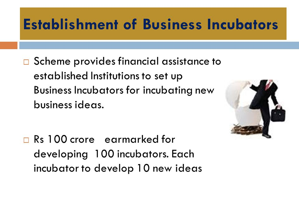 Establishment of Business Incubators