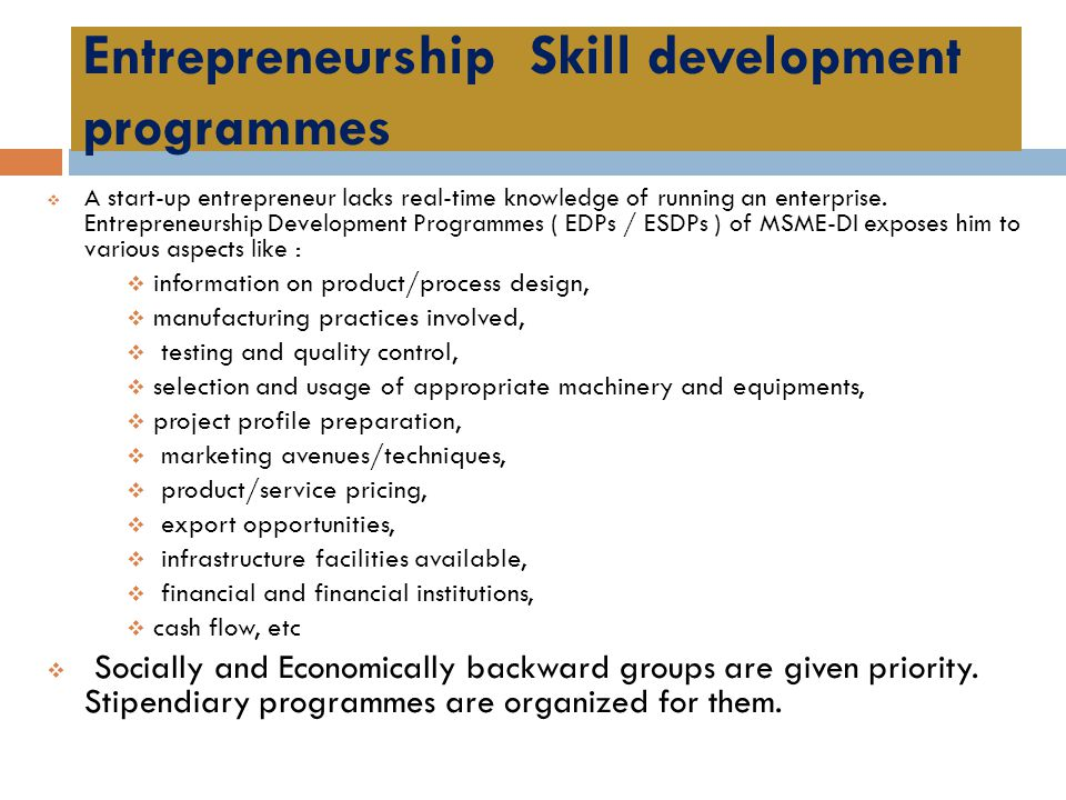 Entrepreneurship Skill development programmes