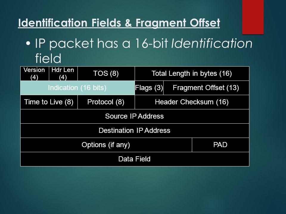 Identification Fields & Fragment Offset