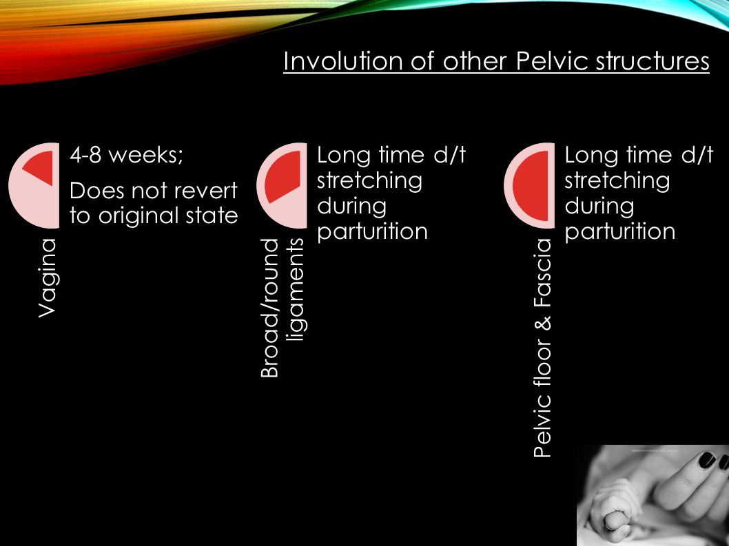 Involution of other Pelvic structures