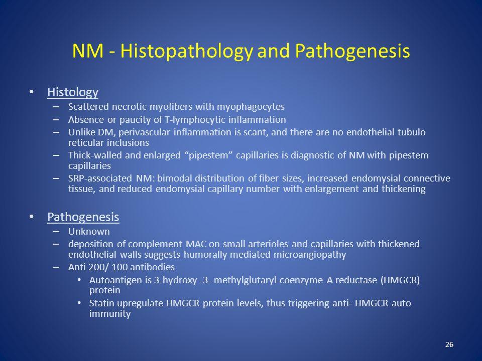 NM - Histopathology and Pathogenesis