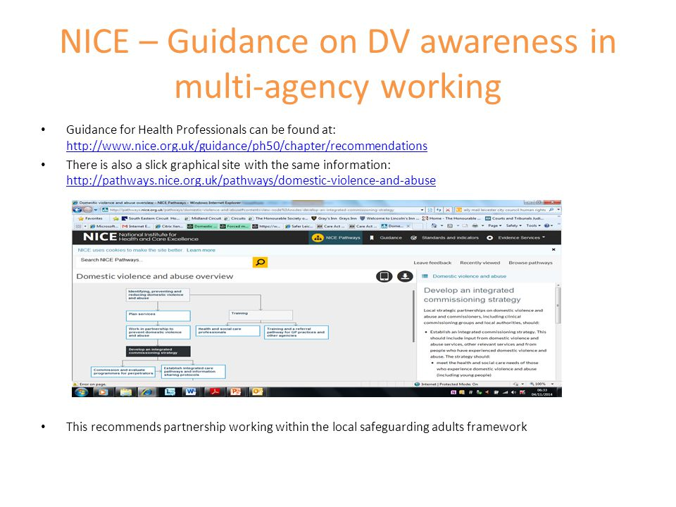 NICE – Guidance on DV awareness in multi-agency working