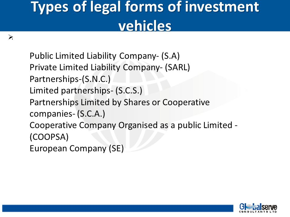 Types of legal forms of investment vehicles