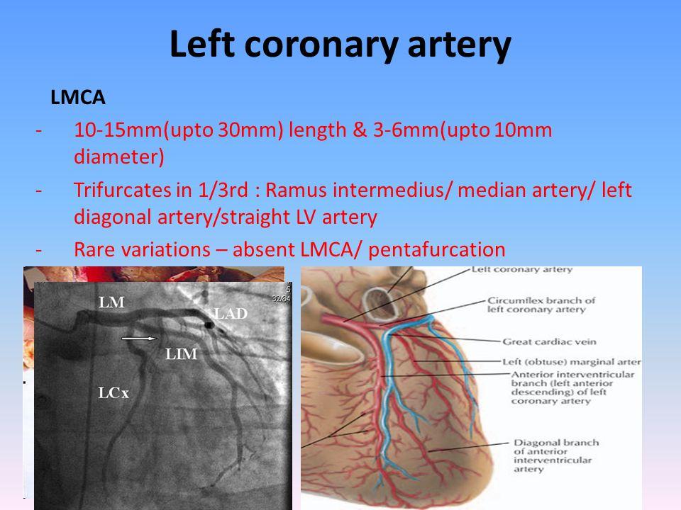 Left coronary artery LMCA