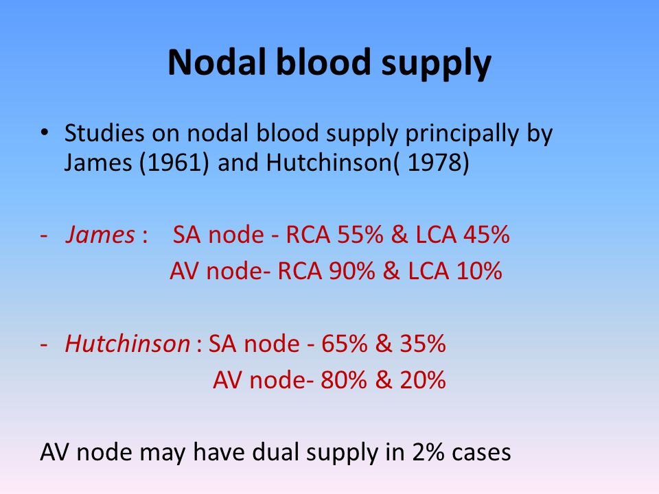 Nodal blood supply Studies on nodal blood supply principally by James (1961) and Hutchinson( 1978) - James : SA node - RCA 55% & LCA 45%