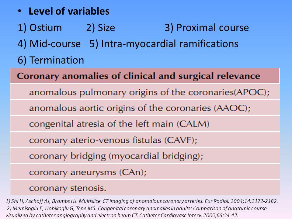 1) Ostium 2) Size 3) Proximal course