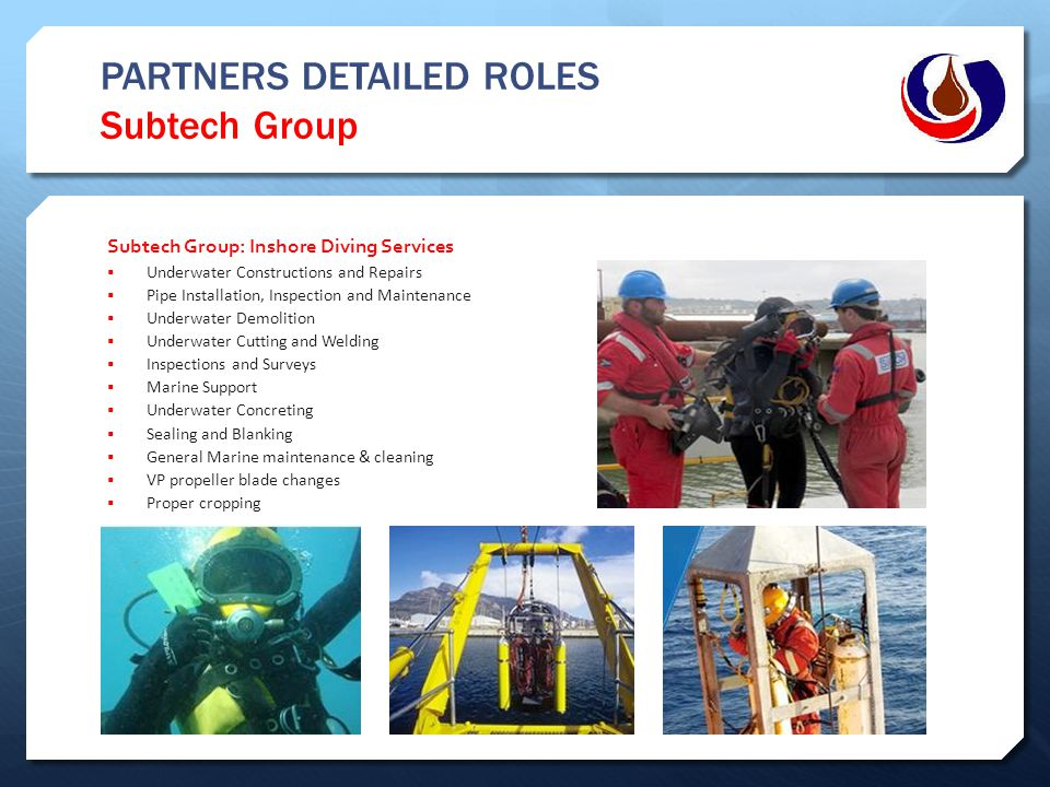 PARTNERS DETAILED ROLES Subtech Group