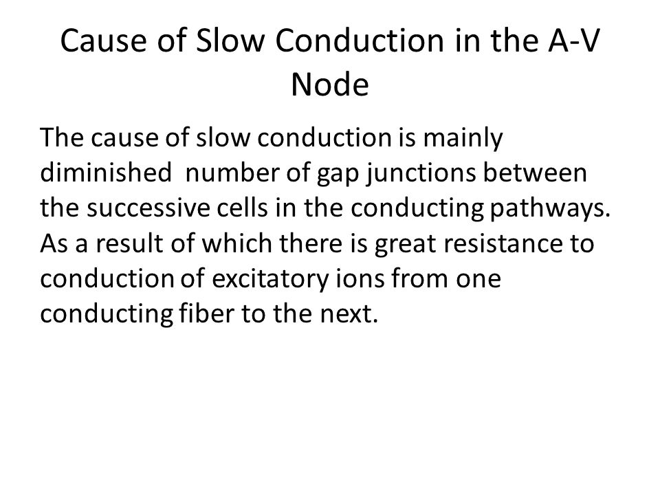 Cause of Slow Conduction in the A-V Node
