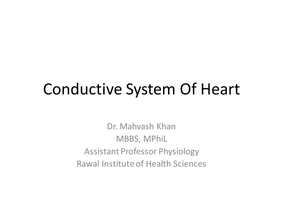 Conductive System Of Heart
