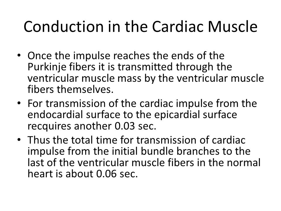 Conduction in the Cardiac Muscle