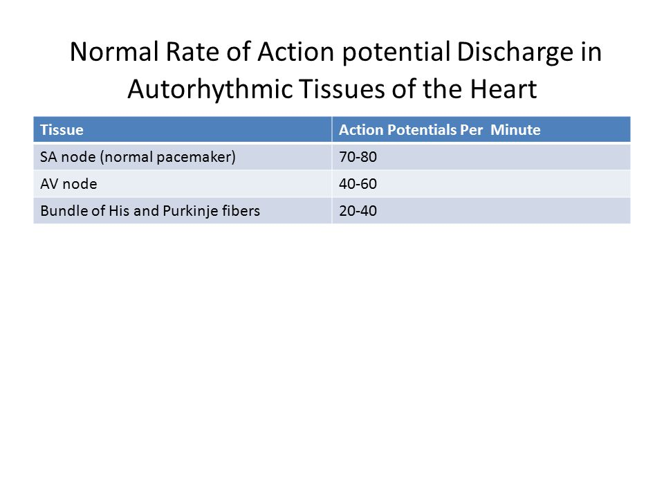 Normal Rate of Action potential Discharge in Autorhythmic Tissues of the Heart