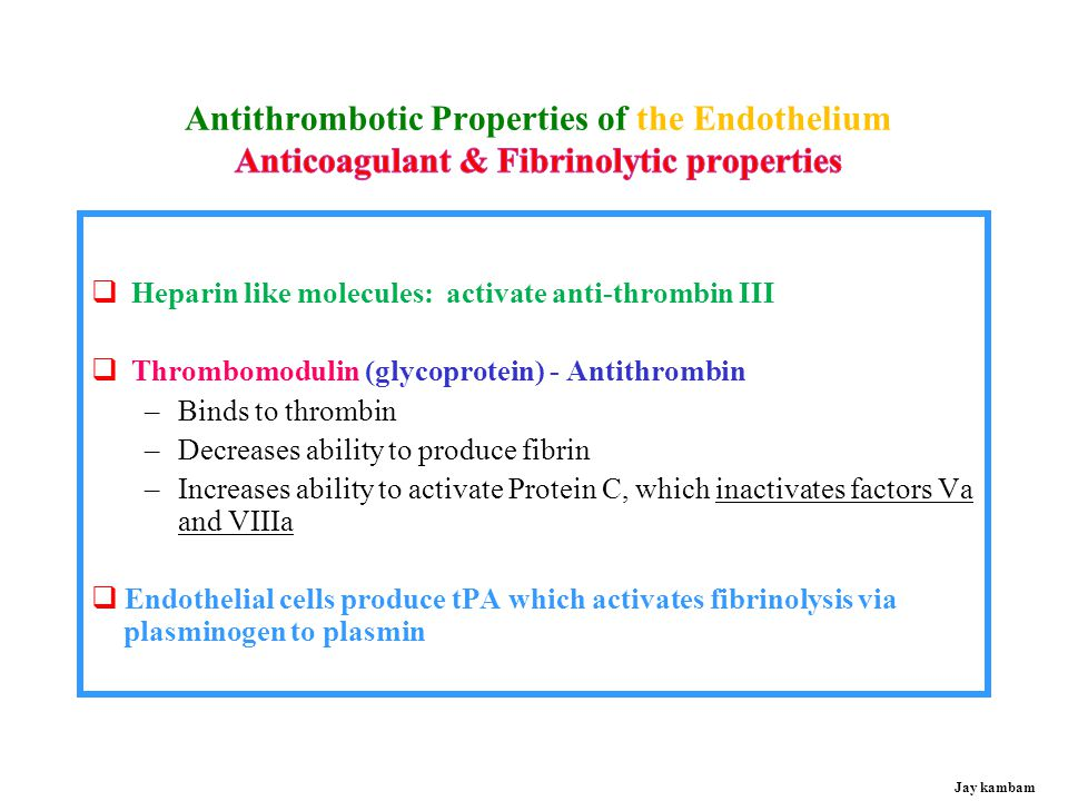 Antithrombotic Properties of the Endothelium Anticoagulant & Fibrinolytic properties