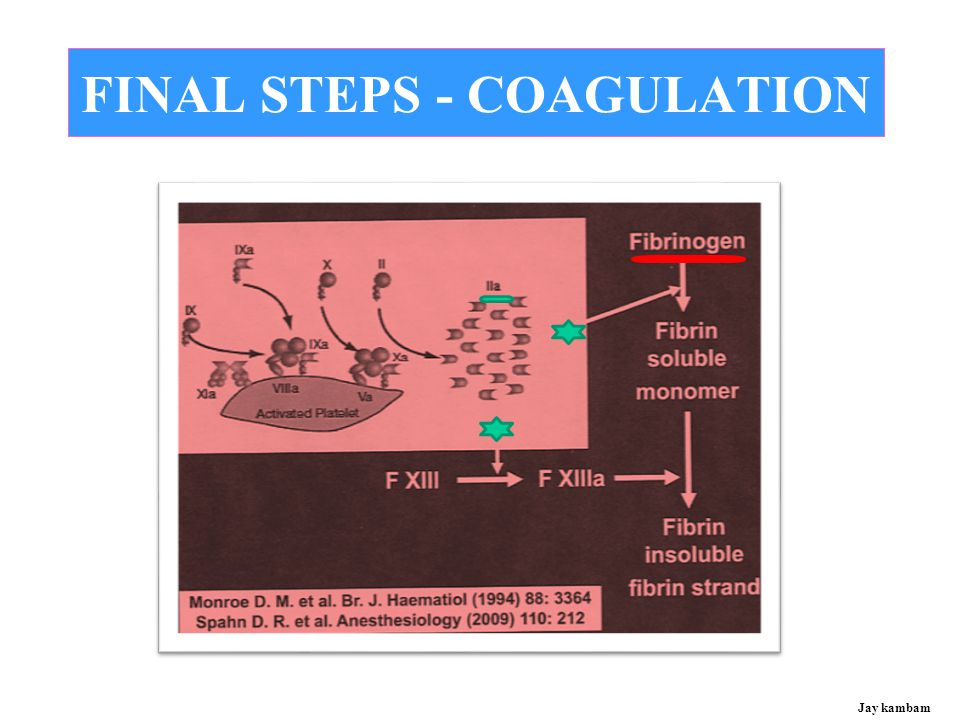 FINAL STEPS - COAGULATION