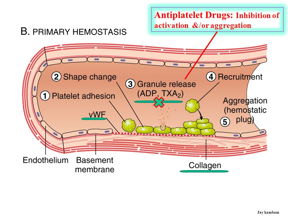 Antiplatelet Drugs: Inhibition of
