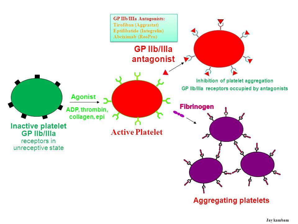 GP IIb/IIIa antagonist