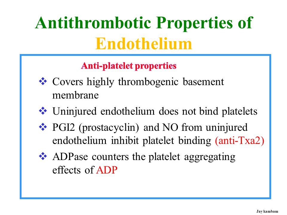 Antithrombotic Properties of Endothelium